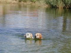 Dana und Ilea üben das Synchronschwimmen