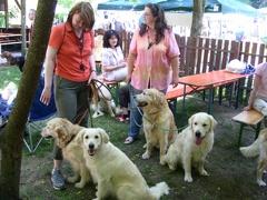 Familientreff auf der DRC Clubschau in Pörnbach