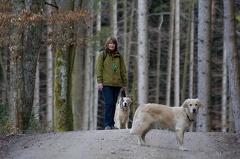 Spaziergang in Bettbrunn