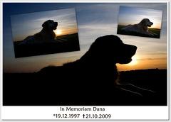 In Memoriam Dana 2009