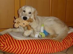 Xavi und sein Weihnachtsgeschenk