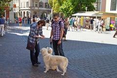 Stadtbummel durch Konstanz