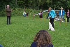 Ferienpassaktion in der Hundeschule-Vorstellung der Hunderasse