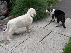 erster Treff mit Monty