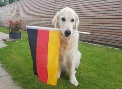 2018 06 17  142903 -- Deutschlandfan Xavi