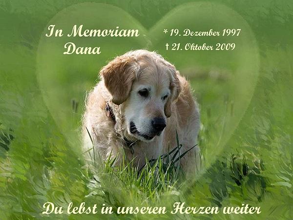 dana_memoriam2